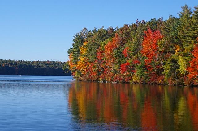 fall-187779_640