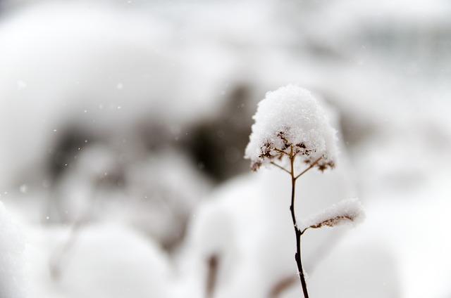 snow-690278_640