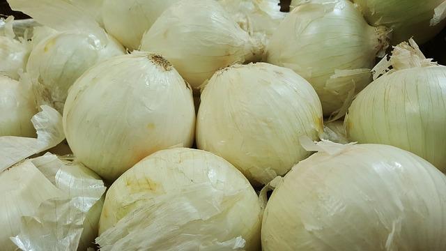 onion-1310275_640