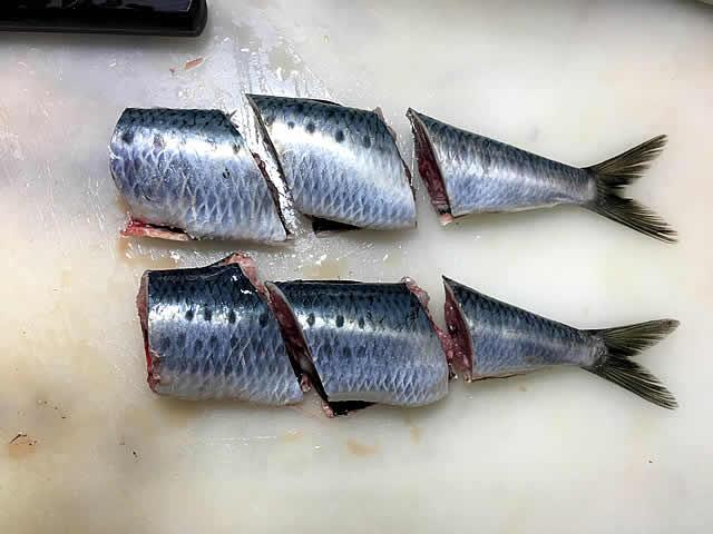 sardine_ni_003