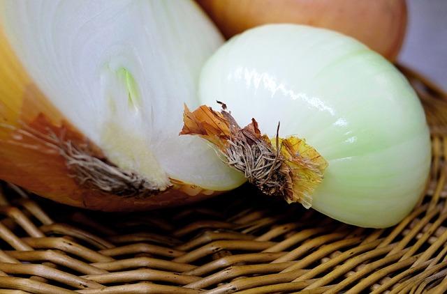 onion-1144627_640