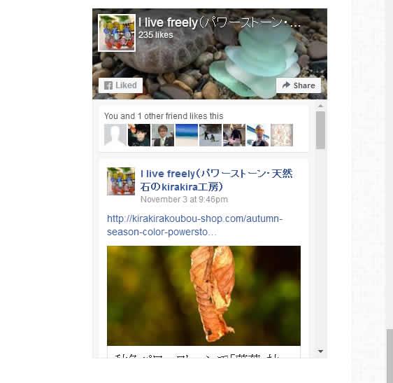 facebook_pp_001